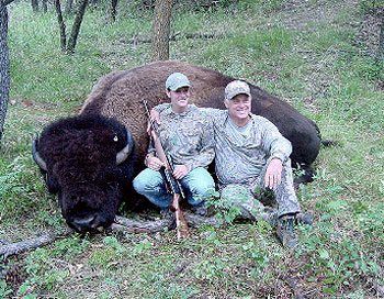 Bison Hunts, Buffalo hunts, Bison Hunting, Buffalo Hunting